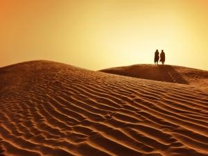 bedouins-in-desert